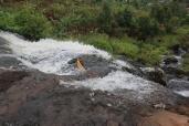 07b Sipi Falls (70)