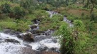07b Sipi Falls (72)