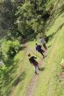07b Sipi Falls (8)