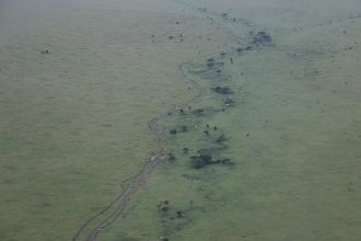 18-20 serengeti (312)