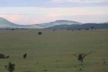18-20 serengeti (330)