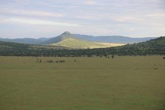 18-20 serengeti (332)
