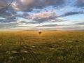 Serengeti Dawn