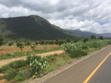 Usumbara Mountains