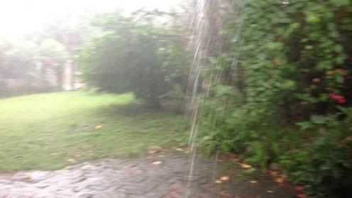 Rains (4)