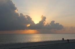 Zanzibar (550)-482